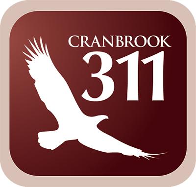 311 App